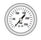 """Manometer 0-250 bar, 63 mm, 1/4"""" Anschluss hinten"""